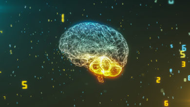 Photo of Beyni Geliştirmenin Yolları