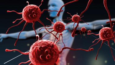 Photo of Bağışıklık Sistemi Nasıl Güçlendirilir?