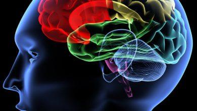 Photo of Beyin için Faydalı En Önemli Baharatlar