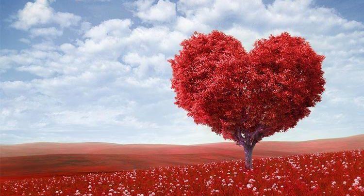 Photo of Sevgililer Günü İçin Hediye Seçimi